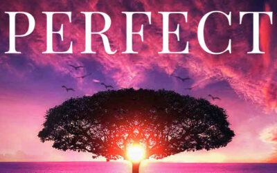 Ep 42: Perfect – A Path to Love, Forgiveness and Transformation (book of the same name by Judi Miller)